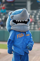 Myrtle Beach Pelicans mascot Rally Shark before a game against the Potomac Nationals at Ticketreturn.com Field at Pelicans Ballpark on May 25, 2015 in Myrtle Beach, South Carolina. Myrtle Beach defeated Potomac 3-0. (Robert Gurganus/Four Seam Images)