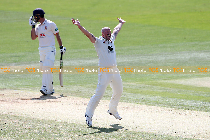 Darren Stevens of Kent claims the wicket of Ryan ten Doeschate during Kent CCC vs Essex CCC, Specsavers County Championship Division 1 Cricket at the St Lawrence Ground on 20th August 2019