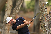 Romain Wattel (FRA) in the rough on the 11th during Round 2 of the Australian PGA Championship at  RACV Royal Pines Resort, Gold Coast, Queensland, Australia. 20/12/2019.<br /> Picture Thos Caffrey / Golffile.ie<br /> <br /> All photo usage must carry mandatory copyright credit (© Golffile | Thos Caffrey)