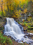 Ricketts Glen State Park, PA: Erie Falls on Kitchen Creek in autumn
