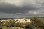 Israel, Shephelah, an Olive grove in Bet Gemel overlooking Beth Shemesh