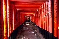 Thousands of vermilion torii gates line a path up a hill at the Fushimi Inari-taisha (shinto) Shrine in Kyoto, Japan