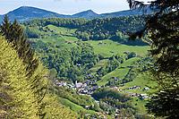 Deutschland, Bayern, Oberbayern, Berchtesgadener Land, Marktschellenberg: Fruehling im Berchtesgadener Land | Germany, Bavaria, Upper Bavaria, Berchtesgadener Land, Marktschellenberg: springtime at Berchtesgadener Land