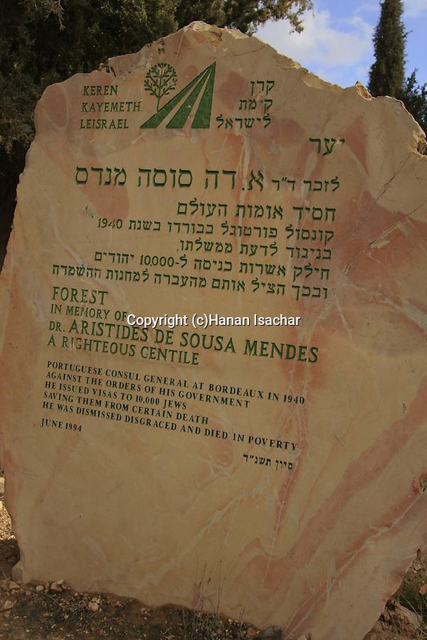Israel, Yatir forest, a memorial to Dr. Aristides de Sousa Mendes, a righteous Gentile