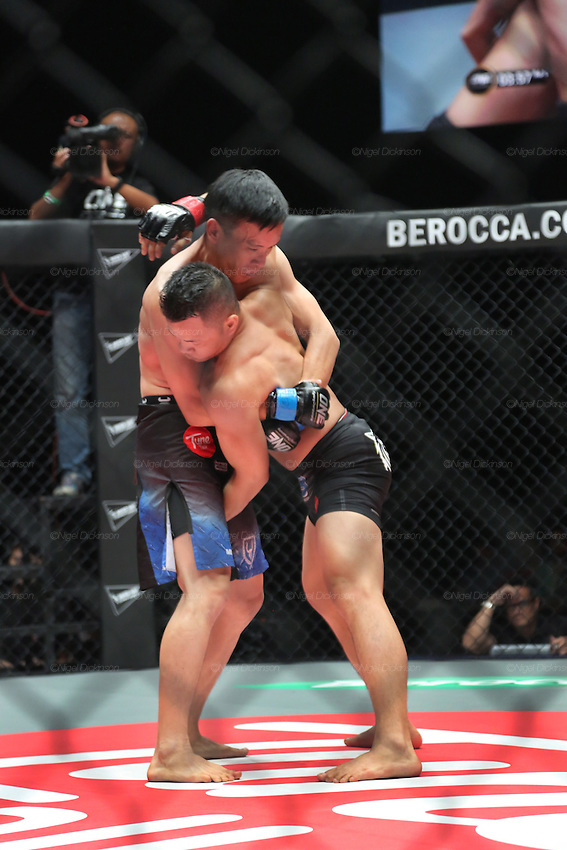 Saiful Merican, 1st ranked WMA featherweight, fights Melvin Yeoh, South Malaysia Muay Thai Champion<br /><br />MMA. Mixed Martial Arts &quot;Tigers of Asia&quot; cage fighting competition. Top professional male and female fighters from across Asia, Russia, Australia, Malaysia, Japan and the Philippines come together to fight. This tournament takes place in front of a ten thousand strong crowd of supporters in Pelaing Stadium. Kuala Lumpur, Malaysia. October 2015