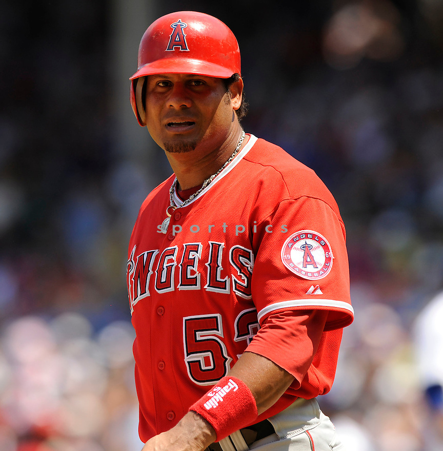 BOBBY ABREU, of the Los Angeles Angels, in action during the Angels game against the Chicago Cubs at Wrigley Field in Chicago, IL on June 18, 2010.  ..The Angels won the game 7-6...