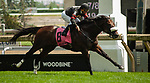 Toronto, Ontario. #8, Delta Prince, wins the Grade II King Edward Stakes for Adena Springs and Stronach Stables. Javier Castellano in the irons for Trainer Jimmy Jerkens at the 159th Queen's Plate Festival at Woodbine Racetrack in Toronto, Ontario, Canada on June 30th, 2018. (Photo by Kristin Leason/Eclipse Sportswire/Getty Images)
