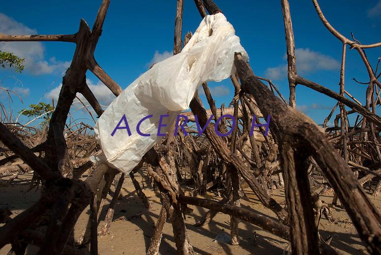 Lixo deixado, por visitantes, nas ra&iacute;zes a&eacute;reas dos manguezais da praia de Paxic&uacute; na Reserva Extrativista Marinha M&atilde;e Grande localizada no litoral do Par&aacute;, na foz do rio Amazonas.<br /> Curu&ccedil;&aacute;, Par&aacute;, Brasil.<br /> Foto: Paulo Santos <br /> 23/07/2009