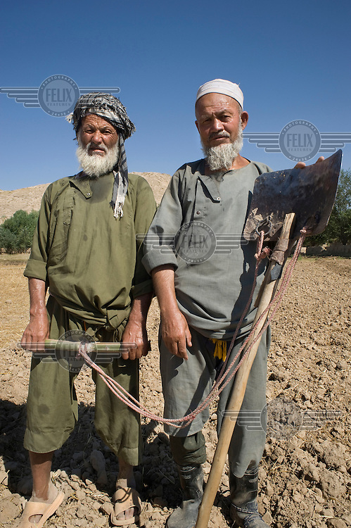 Two farmers with a digging implement.....