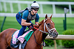 LOUISVILLE, KENTUCKY - APRIL 30: Out for a Spin, trained by Dallas Stewart, exercises in preparation for the Kentucky Oaks at Churchill Downs in Louisville, Kentucky on April 30, 2019. John Voorhees/Eclipse Sportswire/CSM