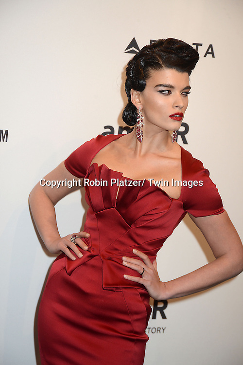 Crystal Renn in Zac Posen red dress and Lorraine Schwartz earrings attends the amfAR New York Gala to kick off Fashion Week on February 6, 2013 at Cipriani Wall Streetin New York City. The honorees were Heidi Klum, Janet Jackson  and Kenneth Cole.