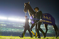FUNABASHI,JAPAN-DECEMBER 24: Kitasan Black farewell ceremony at Nakayama Racecourse on December 24,2017 in Funabashi,Chiba,Japan (Photo by Kaz Ishida/Eclipse Sportswire/Getty Images)