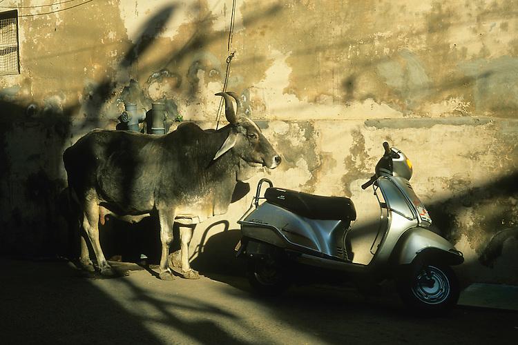 Parking lot, Jodhpur, Rajasthan, India, 2011Rajasthan, India, 2011