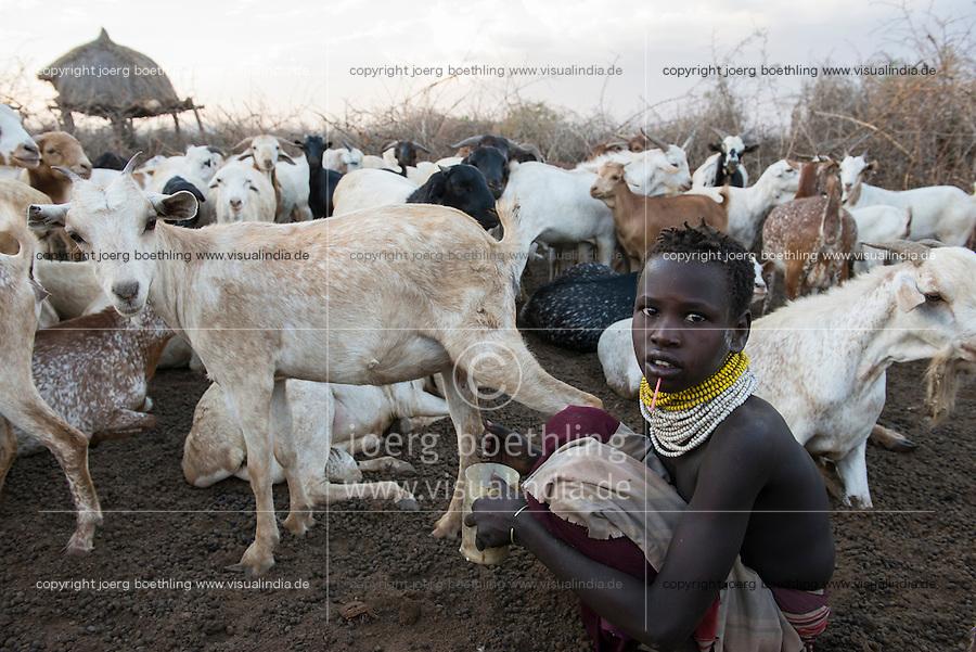 ETHIOPIA, Southern Nations, Lower Omo valley, Kangaten, village Kakuta, Nyangatom tribe, girl milking goats / AETHIOPIEN, Omo Tal, Kangaten, Dorf Kakuta, Nyangatom Hirtenvolk, Maedchen beim Melken der Ziegen