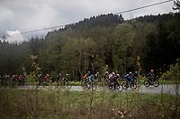 up the Côte du Rosier<br /> <br /> 105th Liège-Bastogne-Liège 2019 (1.UWT)<br /> One day race from Liège to Liège (256km)<br /> <br /> ©kramon