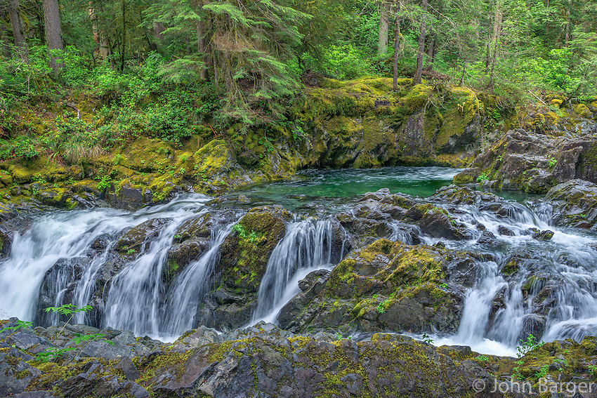 ORCAN_D124 - USA, Oregon, Willamette National Forest, Opal Creek Scenic Recreation Area, Multiple small falls and swift flow of Opal Creek with surrounding old growth forest.