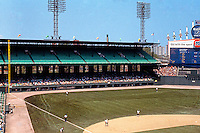 Ballparks: Chicago Comiskey Park. Left field bleachers, 1978.