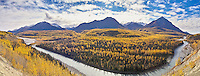 Fall colors dominate this view of the Matanuska River, about 75 miles from Anchorage, Alaska and just upstream from its confluence with the Chickaloon River.