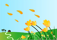 Vector illustration of wild yellow Tulips and petals blowing in wind over sky on a hill.<br />