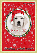 Isabella, CHRISTMAS ANIMALS, WEIHNACHTEN TIERE, NAVIDAD ANIMALES, paintings+++++,ITKE543028-ALE,#xa#