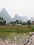 Karst scenery in and around Jiu Xian, China