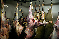 Workers skin deer carcasses before butchering at House of Meats wild game processor in Great Falls, Montana, USA.