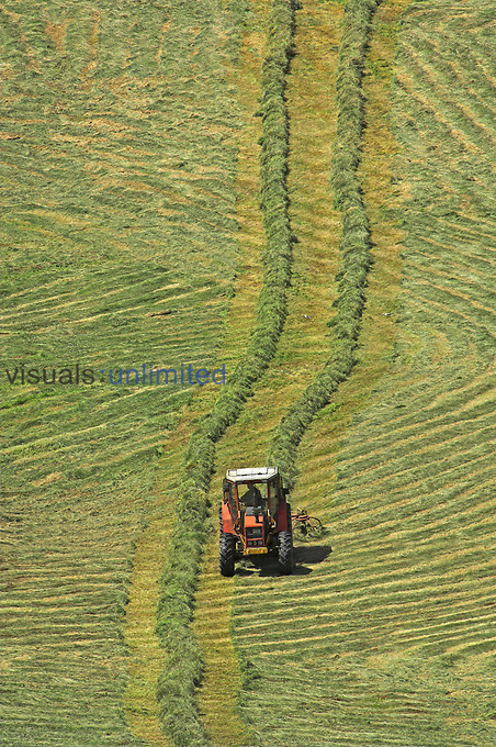 Farmer preparing a field of mowed grass for a baler to bale.
