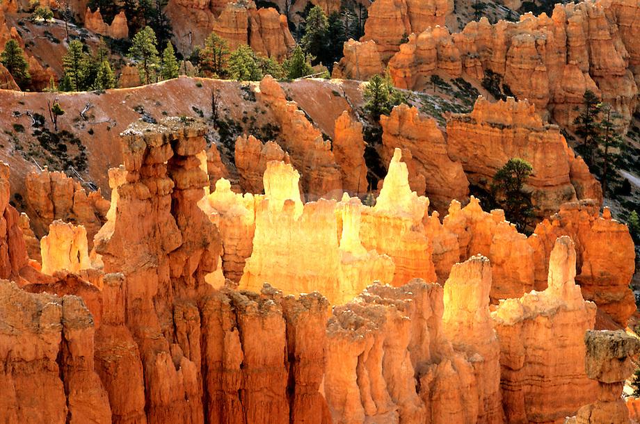 Vroege morgen licht spectakel over de zandsteenpieken van Bryce canyon