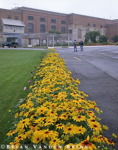 Gardens & Center Block