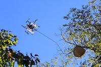 "The drone ""The Joker"" flying towards an Asian hornet's nest.///Le drone « Le joker» en vol vers un nid de frelon asiatique."