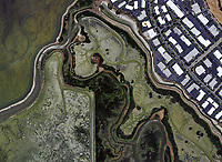 aerial photo map of wetland channels and salt ponds in San Francisco Bay in Newark, California, 2016