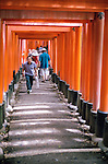 Temple of 10,000 Torii Gates - Kyoto