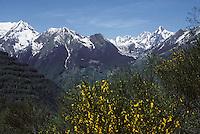 Europe/France/Midi-Pyrénées/09/Ariège/Couserans/Vallée du Haut-Sarlat/Env Couflens: Le Col de Pause et le Mont-Valier