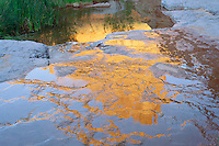 Slickhorn Gulch<br /> San Juan River Canyon<br /> Glen Canyon National Recreation Area<br /> San Juan County, Colorado Plateau,  Utah