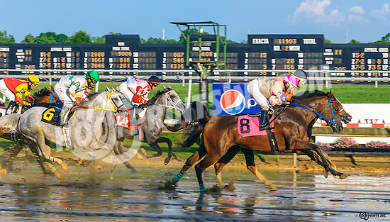 Lady Haha winning at Delaware Park on 7/9/16