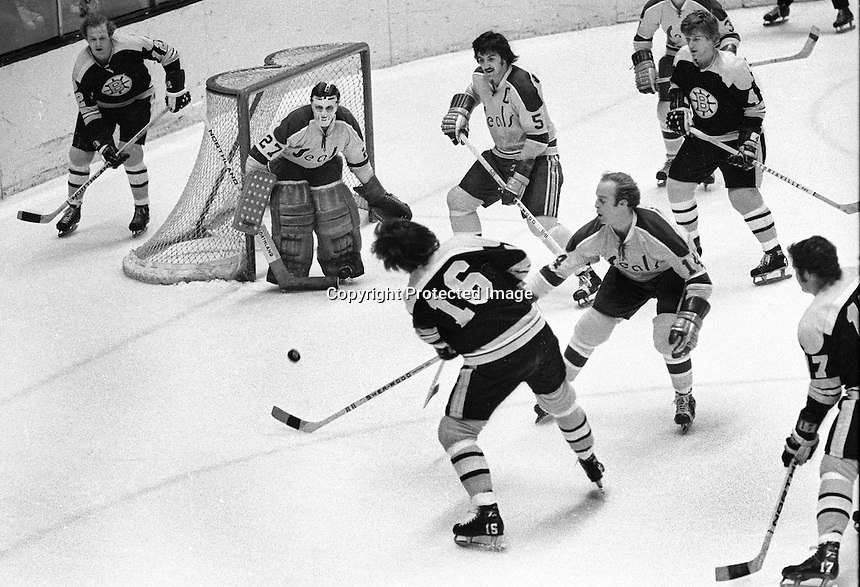 California Golden Seals vs. Boston Bruins at the Oakland Alameda County Coliseum Arena.<br />
