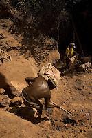 Serra Pelada.<br /> Conhecido como Pedra Preta, Pedro ângelo de Melo de 68 anos trabalha em Serra Pelada a 29 anos e não desiste de continuar garimpando na região.<br /> Com cerca de sete mil moradores , Serra Pelada, que chegou a ter mais de sessenta mil homens no auge do garimpo  vive hoje uma situação precária. De acordo com Salustiano Santos, diretor social da Coomigasp - Cooperativa de Mineraçãodos Garimpeiros de Serra Pelada o garimpo tem os maiores índices de tuberculose e aids do Pará.<br /> Cerca de 10 áreas se mantém com trabalho de poucos garimpeiros as próximidades de antiga cava, que hoje alagada, mantém em suas águas resíduos de mercúrio que contaminaram toda região. Uma série de conflitos jurídicos e políticos mantém fechada a exploração na área.<br /> Curionópolis, Pará, Brasil.<br /> Foto Paulo Santos/Interfoto<br /> 18/08/2009.