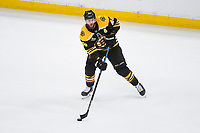 June 6, 2019: Boston Bruins center David Krejci (46) in action during game 5 of the NHL Stanley Cup Finals between the St Louis Blues and the Boston Bruins held at TD Garden, in Boston, Mass. The Blues defeat the Bruins 2-1 in regulation time. Eric Canha/CSM