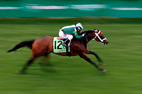 LOUISVILLE, KY - MAY 05: Green Mask #12, ridden by Javier Castellano, wins the Twin Spires Turf Sprint on Kentucky Oaks Day at Churchill Downs on May 5, 2017 in Louisville, Kentucky. (Photo by Jon Durr/Eclipse Sportswire/Getty Images)