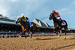 #3 COVFEFE wins the Longines Test Stakes ridden by Joel Rosario Aug 3, 2019 : during racing at Saratoga Race Course in Saratoga Springs, New York. Robert Simmons/Eclipse Sportswire/CSM