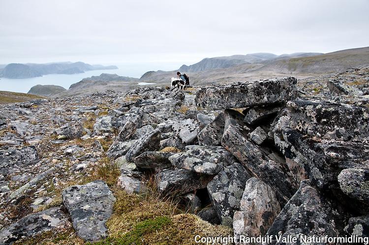 Gamle fangstinnretninger for villrein på Sørøya i Finnmark. ---- Old hides for hunting reindeer on Sørøya in Finnmark.