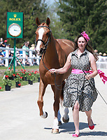 LEXINGTON, KY - April 26, 2017. #10 Share Option and Lillian Heard from the USA at the Rolex Three Day Event First Horse Inspection at the Kentucky Horse Park.  Lexington, Kentucky. (Photo by Candice Chavez/Eclipse Sportswire/Getty Images)