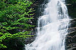 Summer storms at Red Fork Falls, Unaka Mountain Wilderness Area
