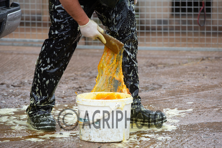 19.6.2020 A vet disinfecting before going on to a farm <br /> ©Tim Scrivener Photographer 07850 303986<br />      ....Covering Agriculture In The UK.