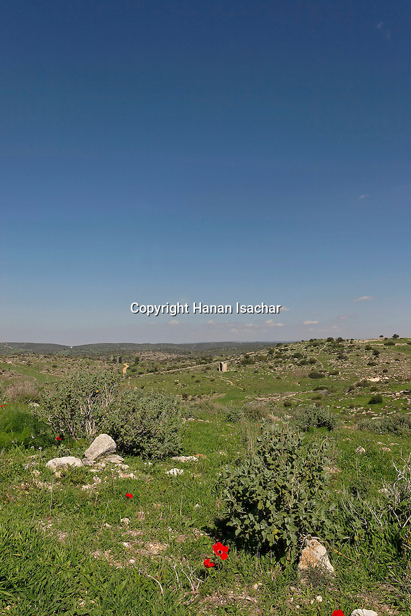 Israel, Shephelah region. Bet Guvrin National Park, a view from Tel Maresha