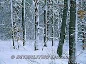 Marek, CHRISTMAS LANDSCAPES, WEIHNACHTEN WINTERLANDSCHAFTEN, NAVIDAD PAISAJES DE INVIERNO, photos+++++,PLMP0166Z,#xl#