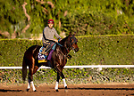 OCT 25: Breeders' Cup Distaff entrant Ollie's Candy, trained by John W. Sadler,  gallops at Santa Anita Park in Arcadia, California on Oct 25, 2019. Evers/Eclipse Sportswire/Breeders' Cup