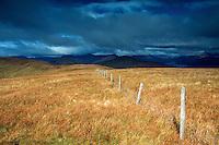 Loch Lomond and the Arrochar Alps from Beinn Dubh, Loch Lomond and the Trossachs National Park