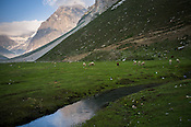 A stream runs through the meadows along the Amarnath trekking route in Panchtarni in Kashmir, India. Hindu pilgrims brave sub zero temperature and high latitude passes and make their pilgrimage to reach the sacred Amarnath cave, which houses a lingam - a stylized phallus, worshiped by Hindus as a symbol of God Shiva. Photo: Sanjit Das/Panos