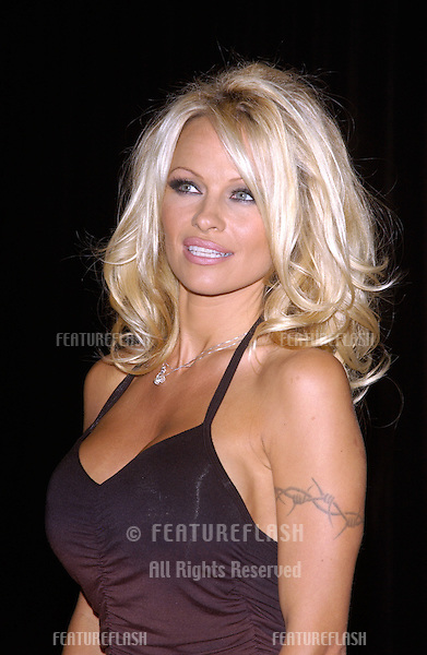 Actress PAMELA ANDERSON at the 4th Annual Adopt-A-Minefield Gala at the Century Plaza Hotel, Beverly Hills, California..October 15, 2004